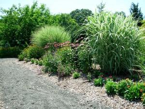 New Jersey Butterfly Garden