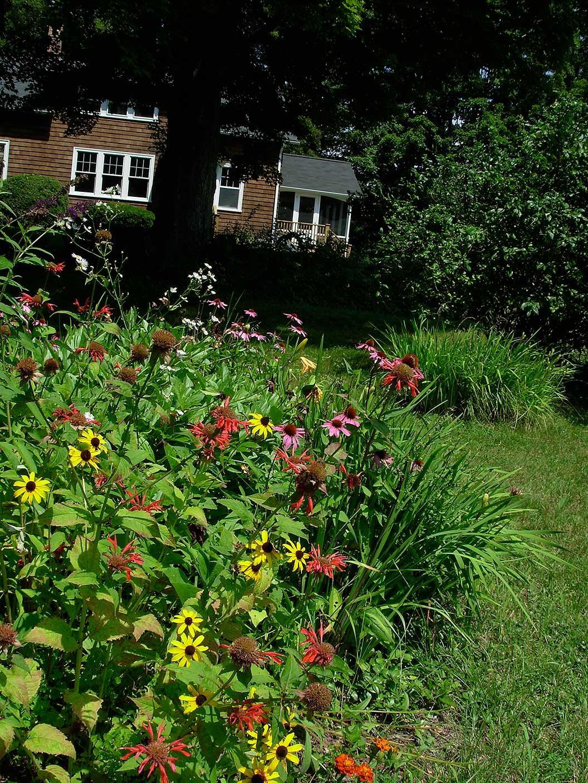 Erfly Garden In Connecticut