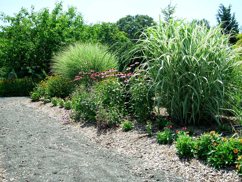 New Jersey Erfly Garden